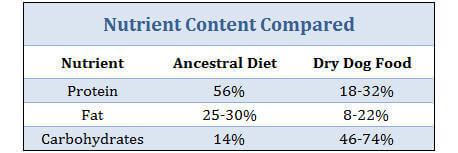 Canine Ancestral Diet versus Dry Dog Food