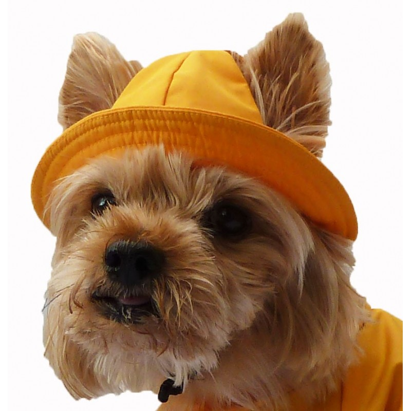 Sailor Hat for dogs