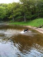 Bad i Rådasjön.