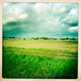 Det kan vara rätt vackert på väg från Skåne...