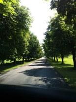 På väg in mot Bosjökloster.