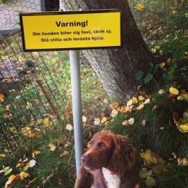 Den här skylten gäller dock alla besökare!