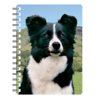 030717115525 3D Notebook Border Collie 2