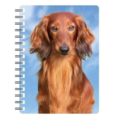 030717115624 3D Notebook Dachshund Long Hair