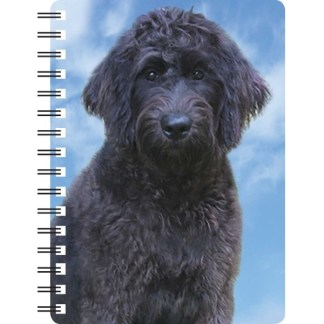 030717120277 3D Notebook Labradoodle Black