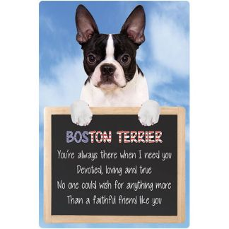 030717117185: 3D Hangable Verse Boston Terrier