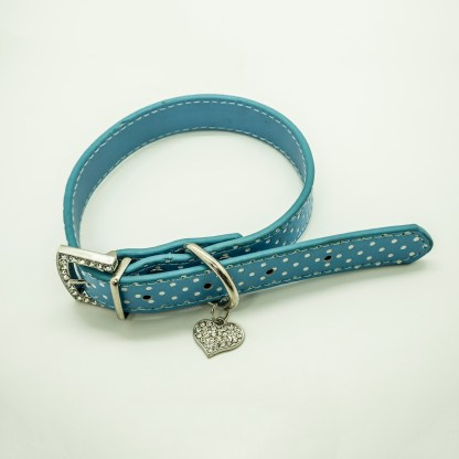 Wagytail Aqua Polka Dot Collar