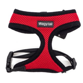 Red and Black Harness