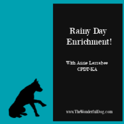Rainy Day Enrichment for Dogs