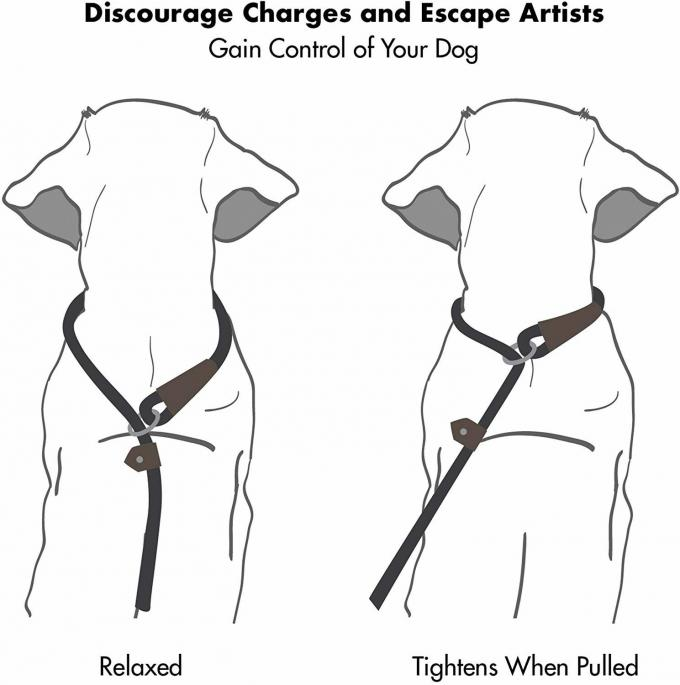 Extremely Durable Dog Harness Leash Mountain Climbing Rope