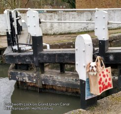 MARCH - Batchworth Lock on Grand Union Canal, Rickmansworth, Hertfordshire
