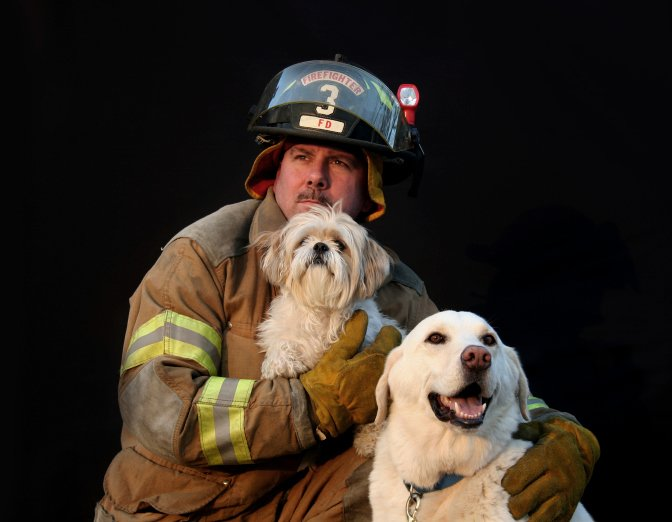 INFOGRAPHIC Pet Fire Safety  The Dogington Post