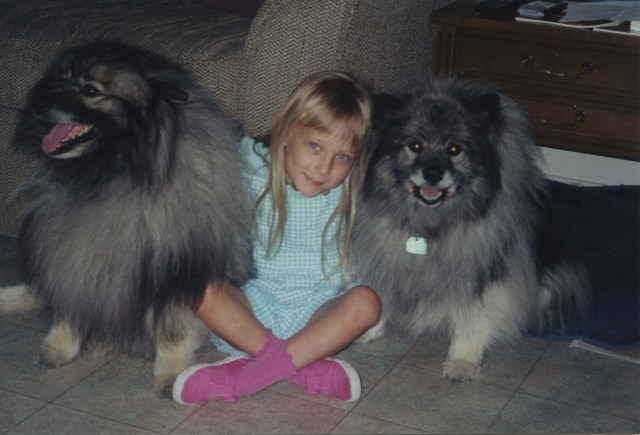 Nabisco and Dawn, our two great keeshond dogs.