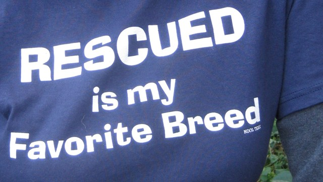 Favorite T-Shirt from The Animal Rescue Site