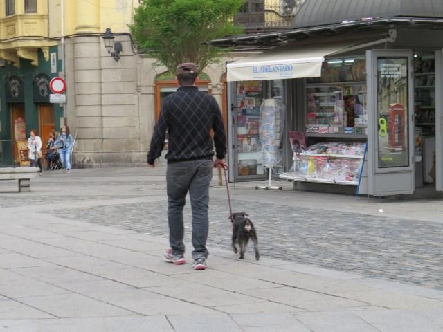 Plaza Major. Segovia, Spain