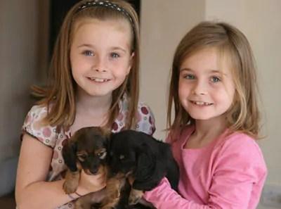 gran children and pups