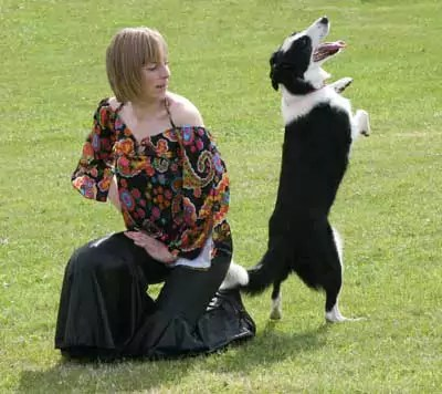 The enjoyment between handlesr and dog is clear to see