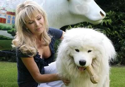 Annabel Karmel's dog Hamilton
