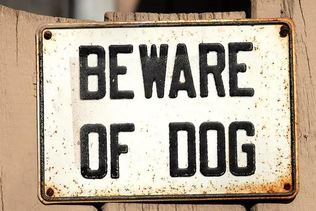 New Legislation October 2014 and Dog Control Orders
