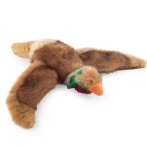 pheasant800jpg