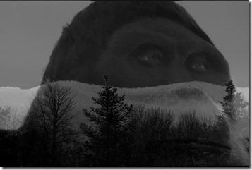 Dark Pennsylvania Bigfoot-crop