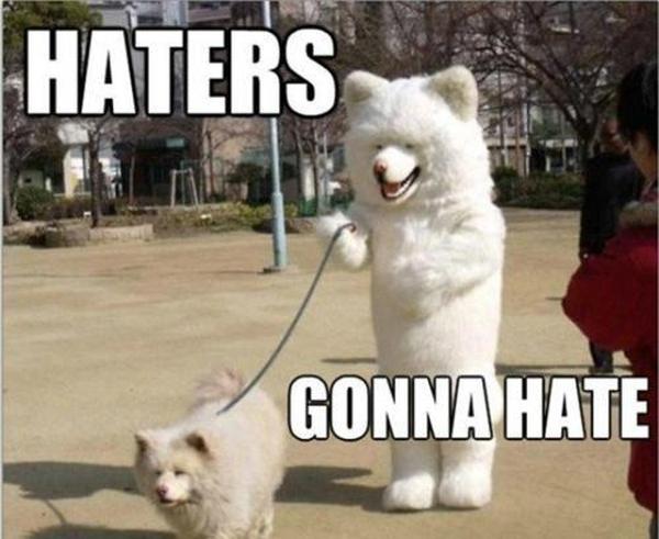 dog-dressed-like-dog-meme