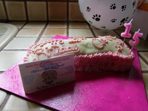 Chloe's dog bone birthday cake arrives!