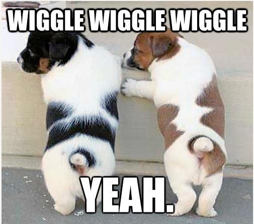 wiggle-wiggle-wednesday