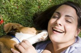 Pets Keep Owners Laughing for How Long? 2