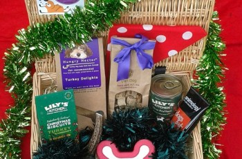 Mia's Big Christmas: A Dog Christmas Hamper Review 5