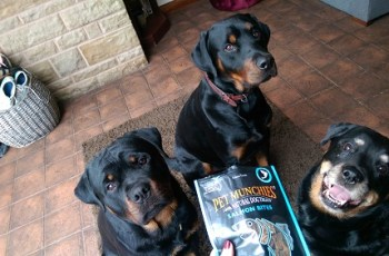 Would Your Dog Like to Win Some of Pet Munchies New Salmon Treats? 2