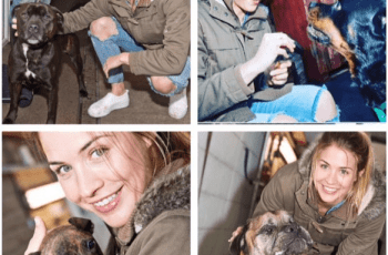 Emmerdale's Gemma Atkinson Launches Fundraising Campaign for Animal Sanctuary (& She Needs Your Help!) 2