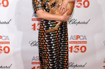 Drew Barrymore Shines on Red Carpet at Annual Event for Animals in Need 2