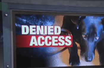 Blind Man With Service Dog Shouted At & Told To Get Out 2