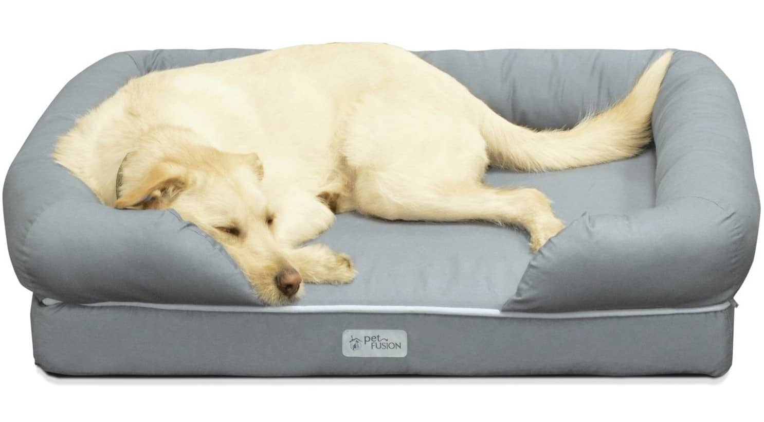 Best Dog Beds Large Small Dog Bed Uk 2020 Guide