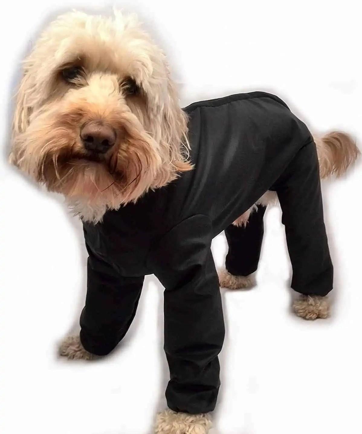 Ultimate Guide: Best Dog Coats: Read Dog Coat Reviews UK