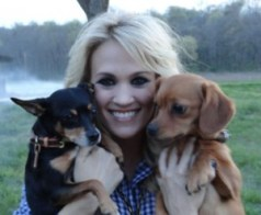 Carrie Underwood's dog names