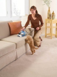 top rated vacuum under 100 for pet hair