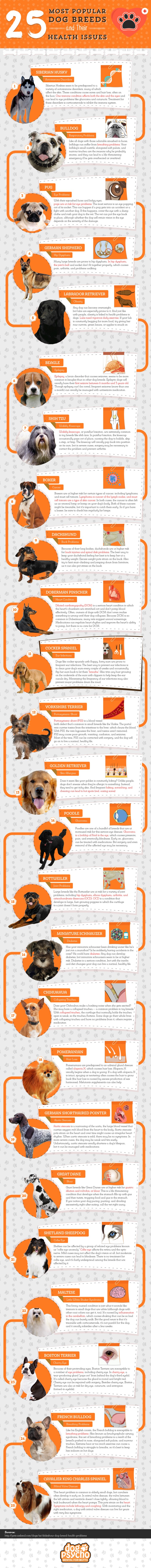 dog breeds and their common health problems