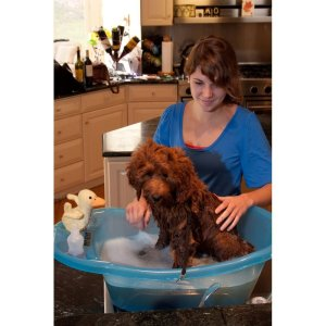 tubs for dog grooming