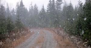 Snow squall - got pretty heavy...