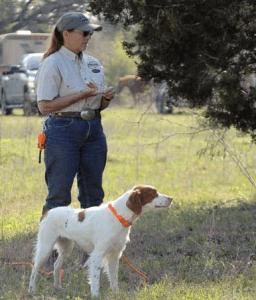 Sherry Ebert, one the nation's top gundog trainers. From sherryebert.com