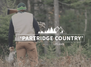 PARTRIDGE COUNTRY- A NORTHWOODS HUNTING VIDEO from Dangerous Cow Publishing