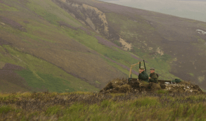 Grouse shooting in Scotland, from the BASC web site