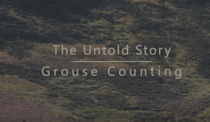 The Untold Story - Grouse Counting
