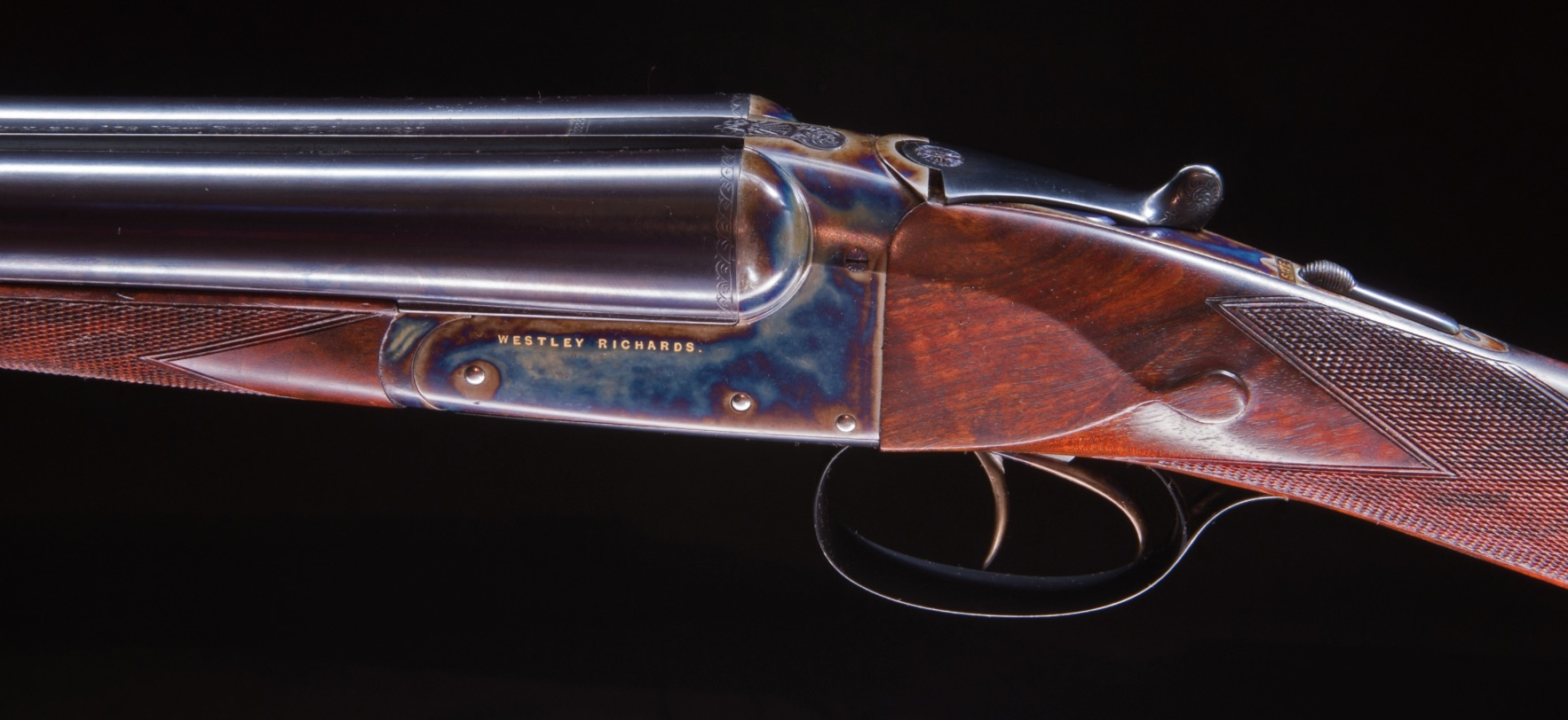 Westley Richards Archives - Dogs and Doubles