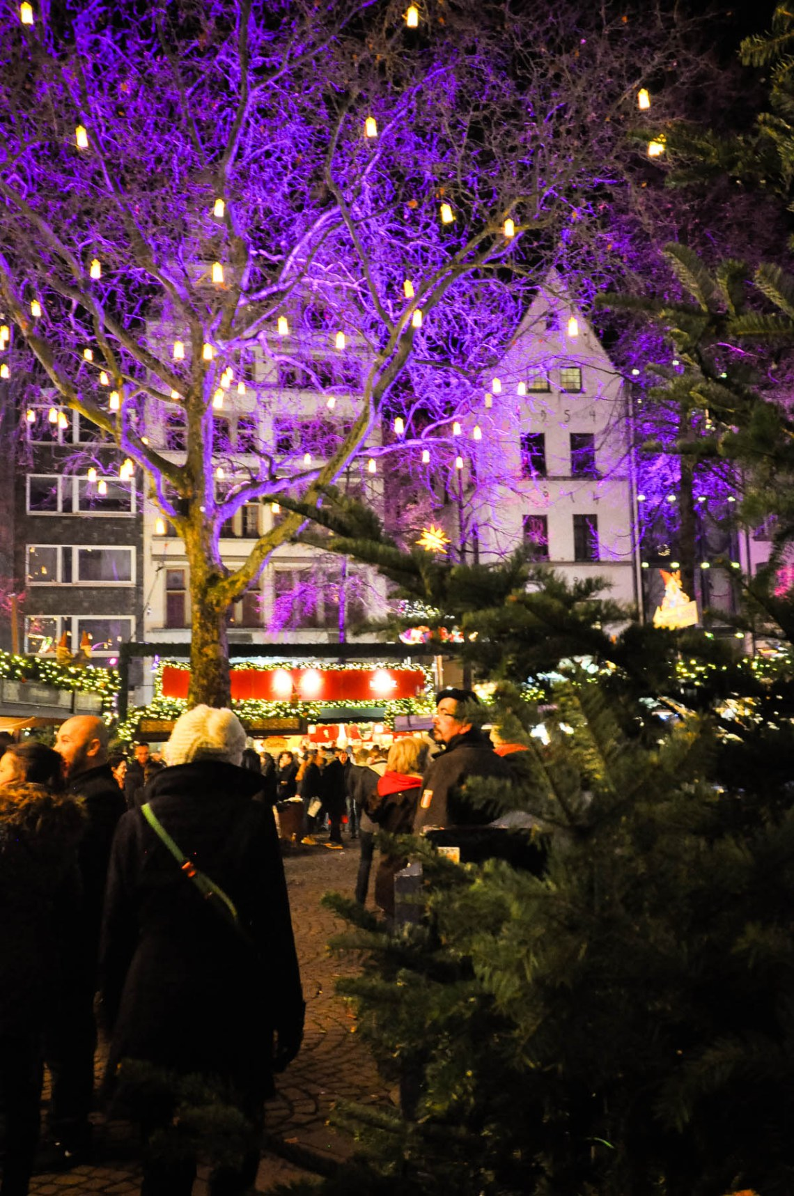 Dogs and Dresses visits Cologne and its Christmas Market near the Hotel Mondial am Dom-49