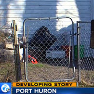 Port huron, fatal pit bull attack, gate area
