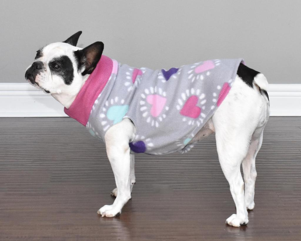 dog wearing grey sweater with pink hearts