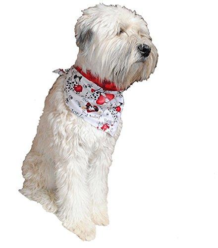 dog wearing valentine's day bandana
